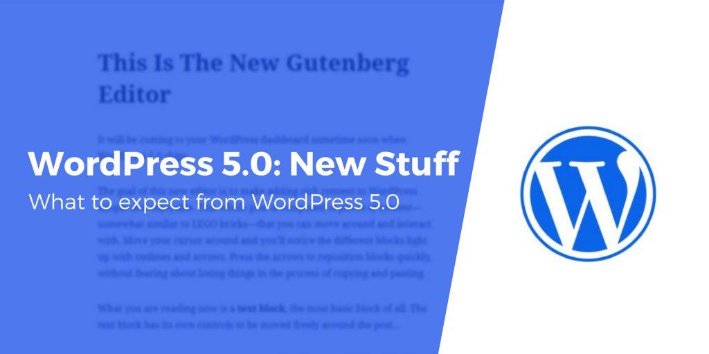 wordpress 5